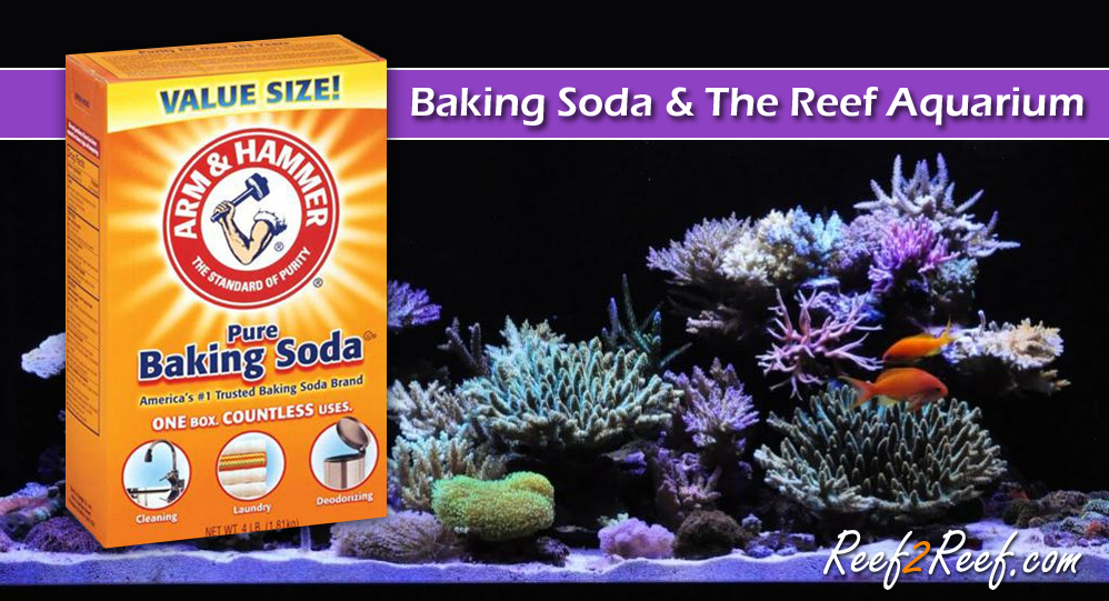 baking soda reef2reef