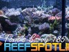Reef Spotlight Mag Featured Image